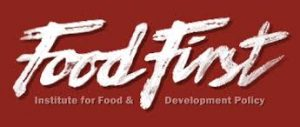 food first logo