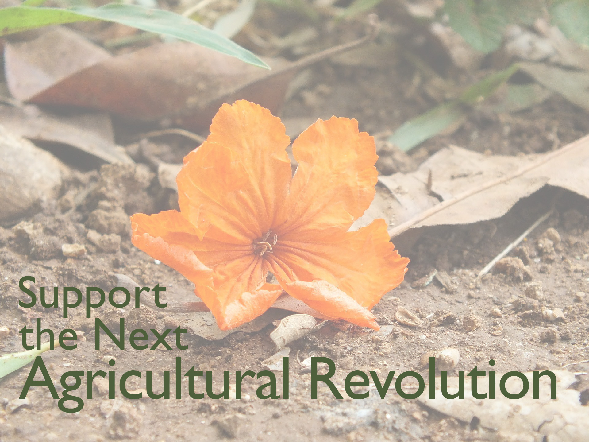 revised Support the next Agricultural Revolution